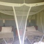 tented cabin