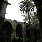 Courtyard in Barcelona Cathedral