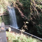 waterfall from walking deck