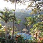 Blick in den Resortgarten