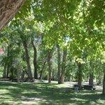 Park, playground, & picnic area