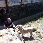 Mit Hundi spielen