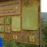 Gangtey Trail begins...