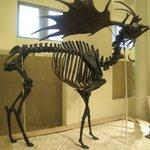 The ancient deer