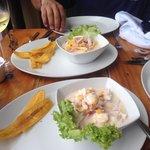 Ceviche de langosta y mixto