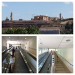 Top: View from BG garden of tower in Piazza del Campo and Siena Cathedral's dome & tower. Bottom