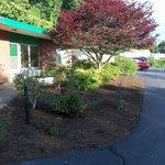 nice landscaping near office