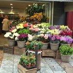 Flower market around corner from hotel