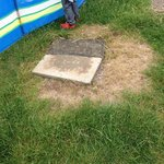 Poorly maintained grounds leaving children very vulnerable to tripping!