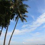 пляж недалеко от отеля (не для купания!)