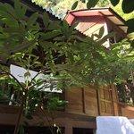 Hillside Sarang