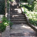 60 steps for my morning exercise :-)