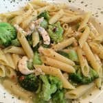 Penne Pasta With Chicken and Broccoli in a Garlic and Oil Sauce