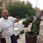 Chef showed us that his vegetables were REALLY local - grown in his rooftop garden. June 12, 201