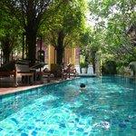 Nice pool near the recption