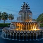 Pineapple fountain in early morning