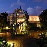Botanischer Garten in der Nacht
