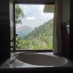 The bathtub view