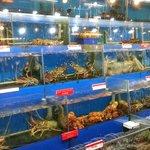 Seafood tanks