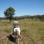 horseback ride safari