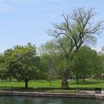 Parkland at Centre Island