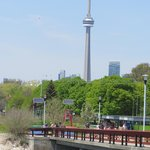 CN Tower from Centre Island pier