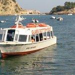 Glass bottom boat...