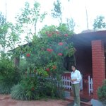 The cottage at Vindhyas