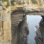 Damien peter Auksorius at Tasman arch
