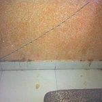 Pared del Restaurante / restaurant wall