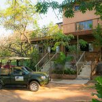 Safari to Kruger from Guest House