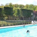 La piscine devant les gîtes