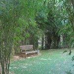 Romántico y largo paseo por el bosque-jardin salvaje que rodea este espectacular hotel.