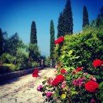 Photo de Villa Paradiso