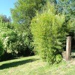 Uno de los muchos rincones de descanso de su espectacular y grandisimo bosque-jardin.