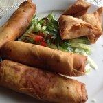 samosa and spring rolls