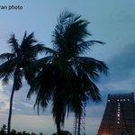 srirangam Rajagopuram visual by MURALITHARAN