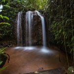 Teresa's Falls