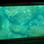 Glass bottomed boat San Miguel...