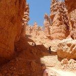 Navajo Loop Hike