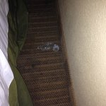 This is the used condom between the bed and wall.