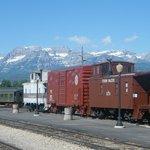 Trains in Railyard