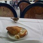 Pajarillo deseando mi pan en la terraza