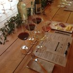 Wine tasting at organic winery