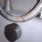 Rusty shower hose