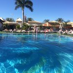 Pool area - always immaculate