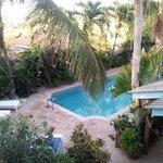 beautiful garden & pool