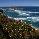 View from Robberg Nature Reserve