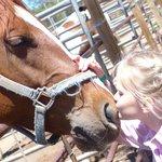 Photo de Triple B Ranch