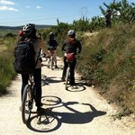 Cycling through the Penendes region